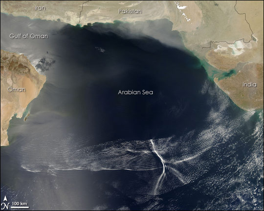 Undular Bores in the Arabian Sea